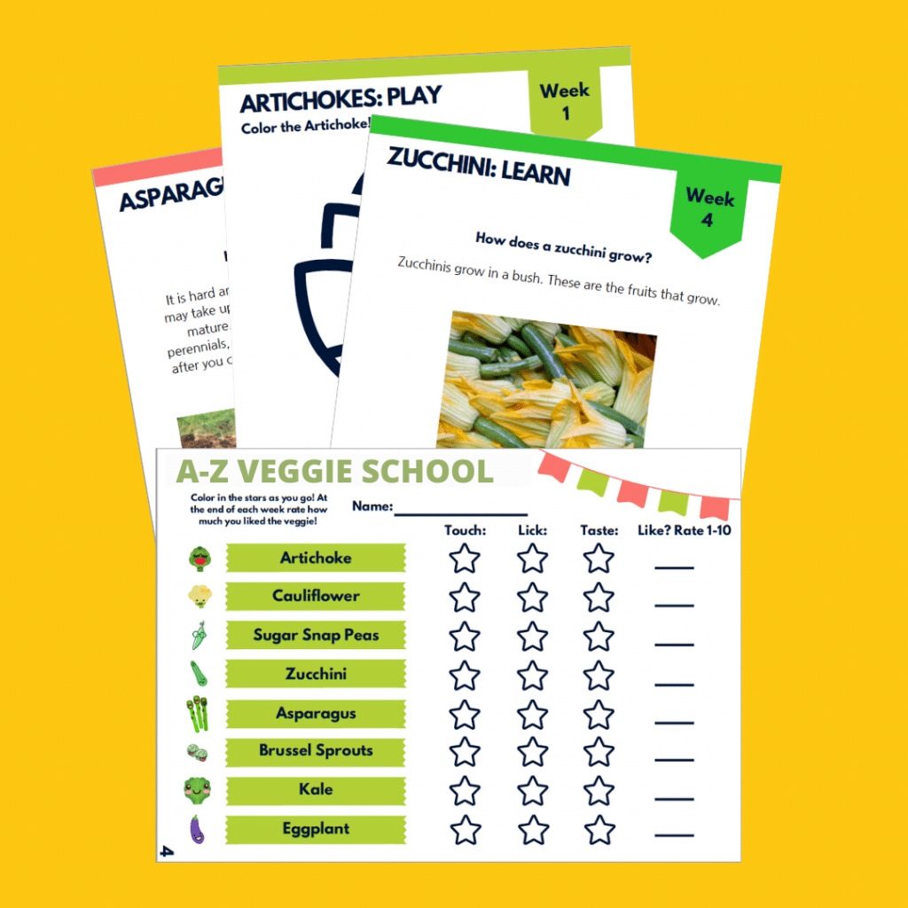 Snap snot of Veggie School downloadable files