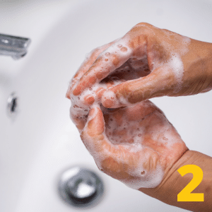 Step 2 Wash hands with soap and water