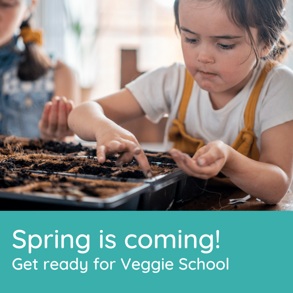 A to Z Veggie School is here. It's perfect for families that want to explore veggies.